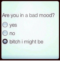 Bad, Bitch, and Memes: Are you in a bad mood?  O yes  O no  O bitch i might be Forever mood 😂