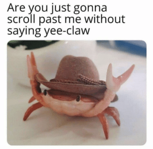 https://t.co/YLSsvnJnOD: Are you just gonna  scroll past me without  saying yee-claw https://t.co/YLSsvnJnOD