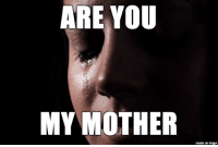 ?: ARE YOU  MY MOTHER  made on imgur ?