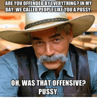 Funny Offensive Memes: ARE YOU OFFENDED BYEVERYTHINGPIN MY  DAY, WE CALLED PEOPLE LIKE YOU A PUSSY.  OH, WAS THAT OFFENSIVE?  PUSSY