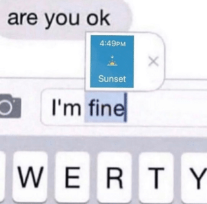 memehumor:  Yeah, We're Fine: are you ok  4:49PM  Sunset  I'm fine  WERTY memehumor:  Yeah, We're Fine