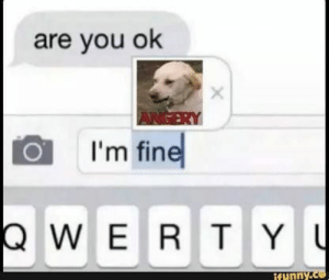 Animals, Funny, and Memes: are you ok  ANGERY  I'm fine  QWERT YU  ifunny.ce 42 Funny Dog Memes That'll Make Your Day! - Lovely Animals World