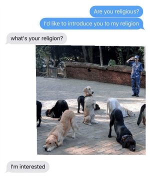 Dank, God, and Memes: Are you religious?  I'd like to introduce you to my religion  what's your religion?  I'm interested Believe in the Good Boy God, even if it means to be a good boy by ShadowKnight324 MORE MEMES