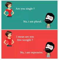 Dekh Bhai, International, and Means: Are you single?  No, i am plural  I mean are you  free tonight  No, i am expensive. Bro Not available 😜