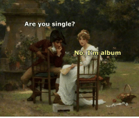Classical Art, Singles, and Classical: Are you single?  Nor Inn album Like Classical Art Memes for more
