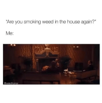 """Smoking, Weed, and House: Are you smoking weed in the house again?""""  Me:  @weedhumor If you smoke weed you gotta check out @storchlabs"""