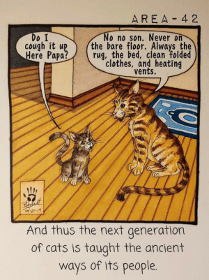 Cats, Clothes, and Ancient: AREA 4 2  Do I  cough it up  Here Papa?  No no son. Never on  the bare floor. Always the  rug, the bed, clean folded  clothes, and heating  vents.  of-21-19  And thus the next generation  of cats is taught the ancient  ways of its people. meow_irl