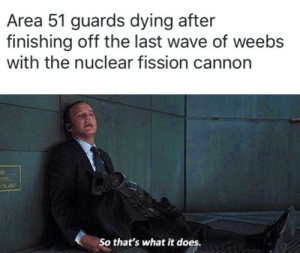 So that's what it does: Area 51 guards dying after  finishing off the last wave of weebs  with the nuclear fission cannon  25  So that's what it does. So that's what it does