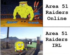 My Disappointment is Immeasurable and My Day is Ruined: Area 51  Raiders  Online  Area 51  WARNHO  Raiders  WARNING  IRL  3.6 My Disappointment is Immeasurable and My Day is Ruined