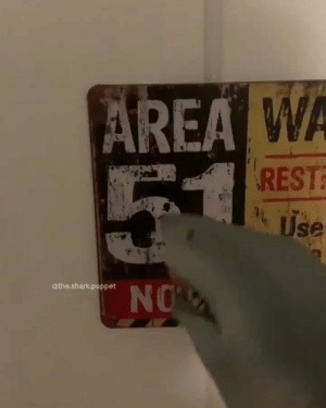 😂 https://t.co/Mmqd5nu3zq: AREA WA  Use  NOW  @the.shark.puppet 😂 https://t.co/Mmqd5nu3zq