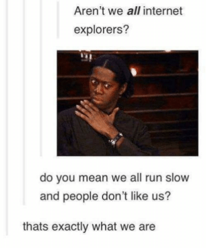 Explorers.: Aren't we all internet  explorers?  do you mean we all run slow  and people don't like us?  thats exactly what we are Explorers.