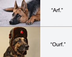 """Me_Irl by AgnesButtcrack MORE MEMES: """"Arf.""""  """"Ourf."""" Me_Irl by AgnesButtcrack MORE MEMES"""