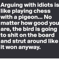 Memes, Shit, and Chess: Arguing with idiots is  like playing chess  with a pigeon... No  matter how good you  are, the bird is going  to shit on the board  and strut around like  it won anyway. DV6