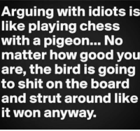 Arguing, Dank, and Birds: Arguing with idiots is  like playing chess  with a pigeon... No  matter how good you  are, the bird is going  to shit on the board  and strut around like  it won anyway.