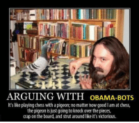 Chess With A Pigeon