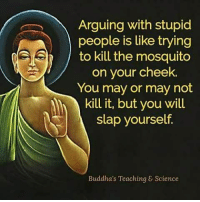 stupid: Arguing with stupid  people is like trying  to kill the mosquito  on your cheek.  You may or may not  kill it, but you wil  slap yourself.  Buddha's Teaching & Science