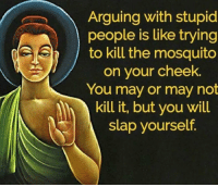 Memes, 🤖, and Mosquito: Arguing with stupid  people is like trying  to kill the mosquito  on your cheek.  You may or may not  kill it, but you will  slap yourself. https://t.co/dTqMF2nTkg