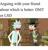Lsd, Dmt, and Friend: Arguing with your friend  about which is better: DMT  or LSD