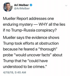 """(S): Ari Melber  @AriMelber  Mueller Report addresses one  enduring mystery-WHY all the lies  if no Trump-Russia conspiracy?  Mueller says the evidence shows  Trump took efforts at obstruction  because he feared a """"thorough""""  probe """"would uncover facts"""" about  Trump that he """"could have  understood to be crimes.""""  4/19/19, 5:45 AM (S)"""
