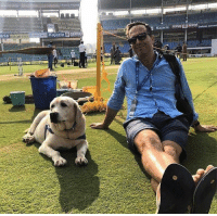 Memes, Heroes, and Michael: aria  Kajaria SERVO  Hero Hero  ia Hero  patiala cemen A great company! Michael Vaughan strikes a pose with another Vizag dog.