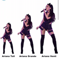 I love this joke...: Arianna Tall  Ariana Grande  Ariana Venti I love this joke...
