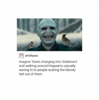 Memes, Hell, and 🤖: arichyuu  imagine Tonks changing into Voldemort  and walking around Hogwarts casually  waving hi to people scaring the bloody  hell out of them