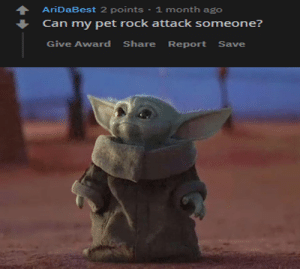 Dank Memes, Rock, and Questions: AriDaBest 2 points · 1 month ago  Can my pet rock attack someone?  Give Award  Share  Report Save One of the thousand questions needed to be answered.