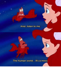 Ariel, listen to me  The human world... It's a mess.