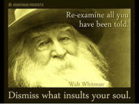 Memes, Walt Whitman, and 🤖: ARMCHAIR PATRIOTS  e-examine all you  have been told.  Walt Whitman  Dismiss what insults your soul HAPPY SUNDAY!  Get beyond politics, Facebook. We need a more thoughtful culture before the politics can get any better...  Pantheism: Everything is Connected, Everything is Divine  Freethinking community: www.pantheism.com Facebook Group: www.facebook.com/groups/pantheism