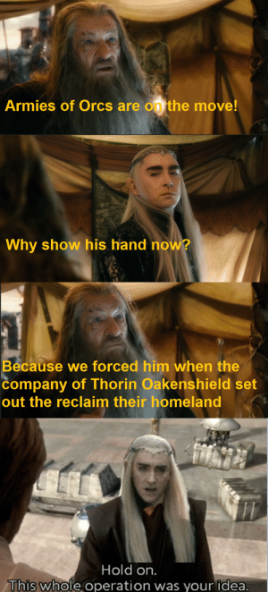 Homeland, Lord of the Rings, and Idea: Armies of Orcs are on the move!  Why show his hand now?  Because we forced him when the  company of Thorin Oakenshield set  out the reclaim their homeland  Hold on.  This whole operation was your idea. Hold on