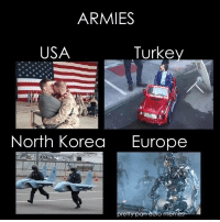 Usa Memes: ARMIES  USA  Turke  North Korea  Europe  etty pan euro memes
