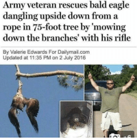 I don't think i've ever seen anything more American than this...😂😂 (via: reddit-lauren_camille): Army veteran rescues bald eagle  dangling upside down from a  rope in 75-foot tree by 'mowing  down the branches' with his rifle  By Valerie Edwards For Dailymail.com  Updated at 11:35 PM on 2 July 2016 I don't think i've ever seen anything more American than this...😂😂 (via: reddit-lauren_camille)