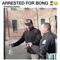 "Memes, Water, and Bong: ARRESTED FOR BONG  @The DailyChief420  IVIT How many of you own a ""Water Pipe""? 😂 - @TheDailyChief420 - 🎥: @vitalyzdtv"