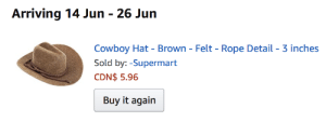 "Future, Target, and Tumblr: Arriving 14 Jun - 26 Jun  Cowboy Hat- Brown- Felt- Rope Detail- 3 inches  Sold by:-Supermart  CDN$ 5.96  Buy it again pangur-and-grim:  pangur-and-grim:  cleverest-lesbian:  pangur-and-grim:   once more, Pangur has no idea what her future holds   please op i'm begging you for an update  that future….is now the present (the rest is up on my ""I Will Make Pangur Wear Hats, And Will Pet Her Lots To Make Her Not Angry With Me Afterward "" patreon)"