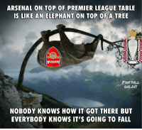 Tag an Arsenal fan 😂: ARSENAL ON TOP OF PREMIER LEAGUE TABLE  IS LIKE AN ELEPHANT ON TOP OF A TREE  FOOTBALL  GALAXY  NOBODY KNOWS HOW IT GOT THERE BUT  EVERYBODY KNOWS IT'S GOING TO FALL Tag an Arsenal fan 😂