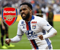 Adidas, Arsenal, and Memes: Arsenal  TRANSFER.TALK  MDA  Grcupama  TONNAIS  adidas  RE LE CAncE Lyon's president says he is willing to keep Alexandre Lacazette this summer unless Arsenal match a valuation of at least £44m. - transfer transfernews transfertalk transferwindow transferrumour