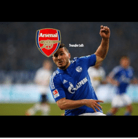 Arsenal, Memes, and Sports: Arsenal  Transfer talk Schalke left-back Sead Kolasinac will join Arsenal when his contract expires this summer. (SKY SPORTS)