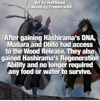 Food, Memes, and Access: Art by HulfBlood  Colored by FrederickNB  After gaining Hashirama'S DNA  Madara and Obito had access  to the Wood Release. They also  gained Hashirama's Regeneration  Ability and no longer required  any food or water to survive. Major players! 🔥 | Obito or Madara, who's your favorite? 🤔