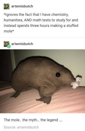 Math, Mole, and Time: artemisbutch  *Ignores the fact that I have chemistry  humanities, AND math tests to study for and  instead spends three hours making a stuffed  mole*  artemisbutch  The mole.. the myth...the legend  Source: artemisbutch Time well spent