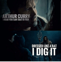 Arthur, Memes, and Fish: ARTHUR CURRY  I HEAR YOU CAN TALK TO FISH  DRESSED LIKE ABAT  I DIG IT 😂😂😂 Edit: @dceucentral