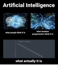How To, Artificial, and How: Artificial Intelligence  9  what amateur  programmers think it is  what people think it is  2 // 10,000 if-statements  4 if)t  if) f  if() {  if) t  7  8  9  10  if() f  if)  讯) {  if() t  if) f  12  13  14  if()  if()  what actually it is How to AI