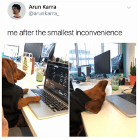 Memes, Inconvenience, and Hell: Arun Karra  @arunkarra_  me after the smallest inconvenience Why the hell arent u following @kalesaladanimals yet