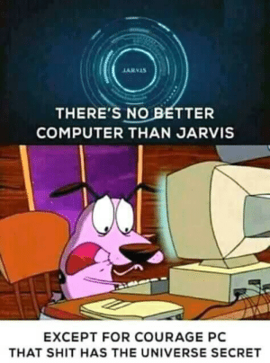 Courage: ARVAS  THERE'S NO BETTER  COMPUTER THAN JARVIS  EXCEPT FOR COURAGE PC  THAT SHIT HAS THE UNIVERSE SECRET Courage