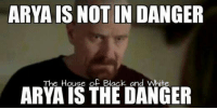 Black and White: ARYA IS NOT IN DANGER  The House of Black and White  ARYA ISTHE DANGER