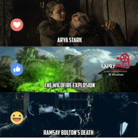 Memes, Fave, and Arya: ARYA STARK  THE WILDFIRE EXPLOSION  RAMSAY BOLTON'S DEATH  Of IFilmZwin What was your fave Season 6 shocker?