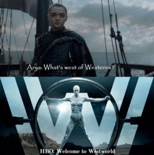 https://t.co/2K2QG13hgz: Arya: What's west of Westeros?  HBO: Weleome to Westworld https://t.co/2K2QG13hgz