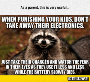 Tumblr, Blog, and Http: As a parent, this is very useful..  WHEN PUNISHING YOUR KIDS, DONT  TAKE AWAY THEIR ELECTRONICS.  JUST TAKE THEIR CHARGER AND WATCH THE FEAR  IN THEIR EYES AS THEY USE IT LESS AND LESS  WHILE THE BATTERY SLOWLY DIES,  THE META PICTURE srsfunny:Very Useful