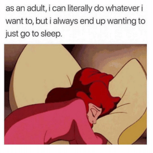 Go to Sleep, Girl Memes, and Sleep: as an adult, i can literally do whatever i  want to, but i always end up wanting to  just go to sleep. I don't see the problem here?