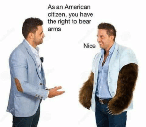 Memes, American, and Bear: As an American  citizen, you have  the right to bear  arms  Nice