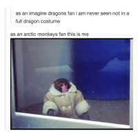 Friends, Memes, and Best: as an imagine dragons fan i am never seen not in a  full dragon costume  as an arctic monkeys fan this is me there are so many people that I can't tell if I want to look like them??? or date them??? or be best friends with them???? or maybe just obsess over them??